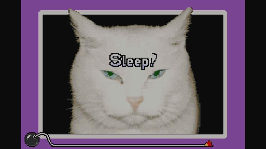WarioWareInc_MinigameMania_GBA-WiiU (3)