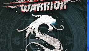 Shadow Warrior -PS4_ANZ