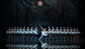 The St Petersburg Ballet 'Swan Lake'-Swans + duo_LR
