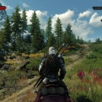 The_Witcher_3_Wild_Hunt_maybe_i_should_pick_some_of_these_flowers_for_yen_sorceresses_dig_flowers