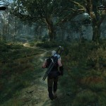 The_Witcher_3_Wild_Hunt_real_witchers_wear_short_sleeves_when_jogging_in_the_woods