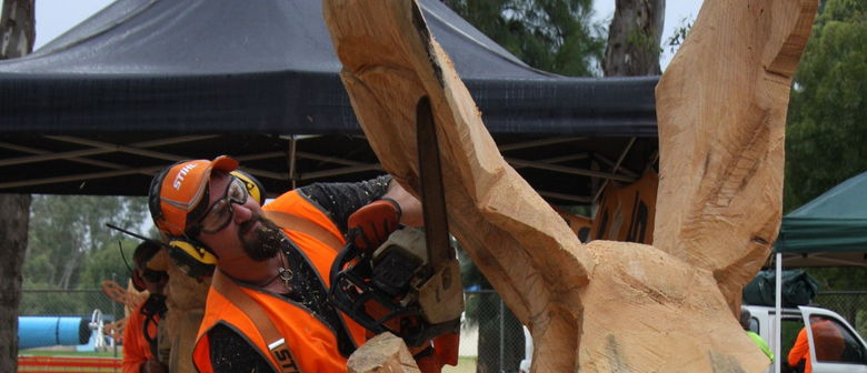 Australian chainsaw carving championship impulse gamer
