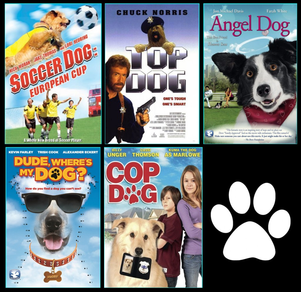 10 Great Dog Movies Everyone Needs to Watch - iHeartDogs.com