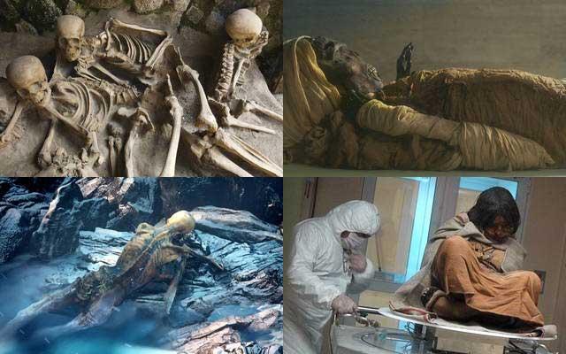 mummiesalive03