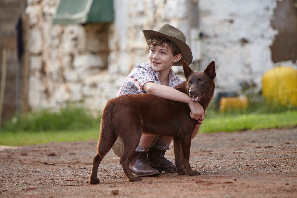 Levi Miller and Dog 02 - Day 16