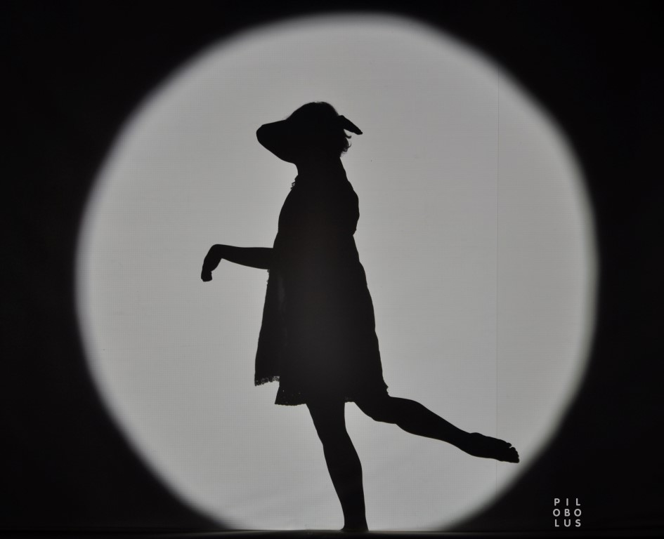 Shadow_DogGirl_Transformation_JohnKane