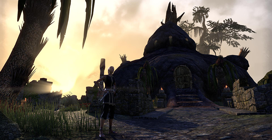 Own Your Own Home In Tamriel