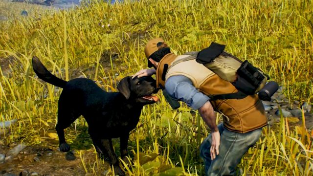 Open Country, XBOX One, petting dog